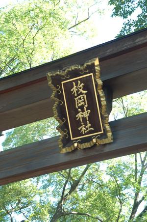 20121005_ichi_0001