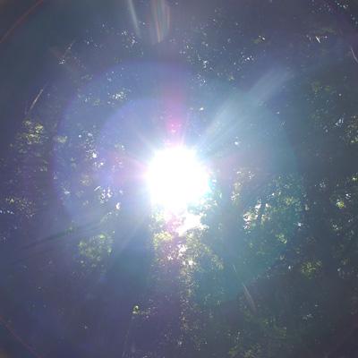 20121005_ichi_0014