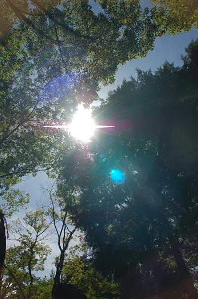20121005_ichi_0029_2